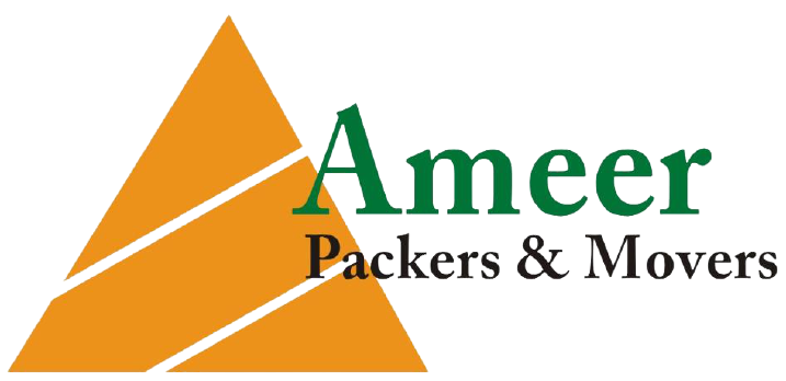 ameer packers logo